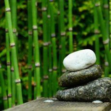 Miért jók a bambusz termékek?